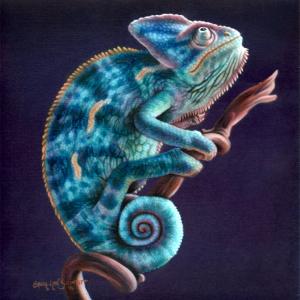 Chameleon-Final