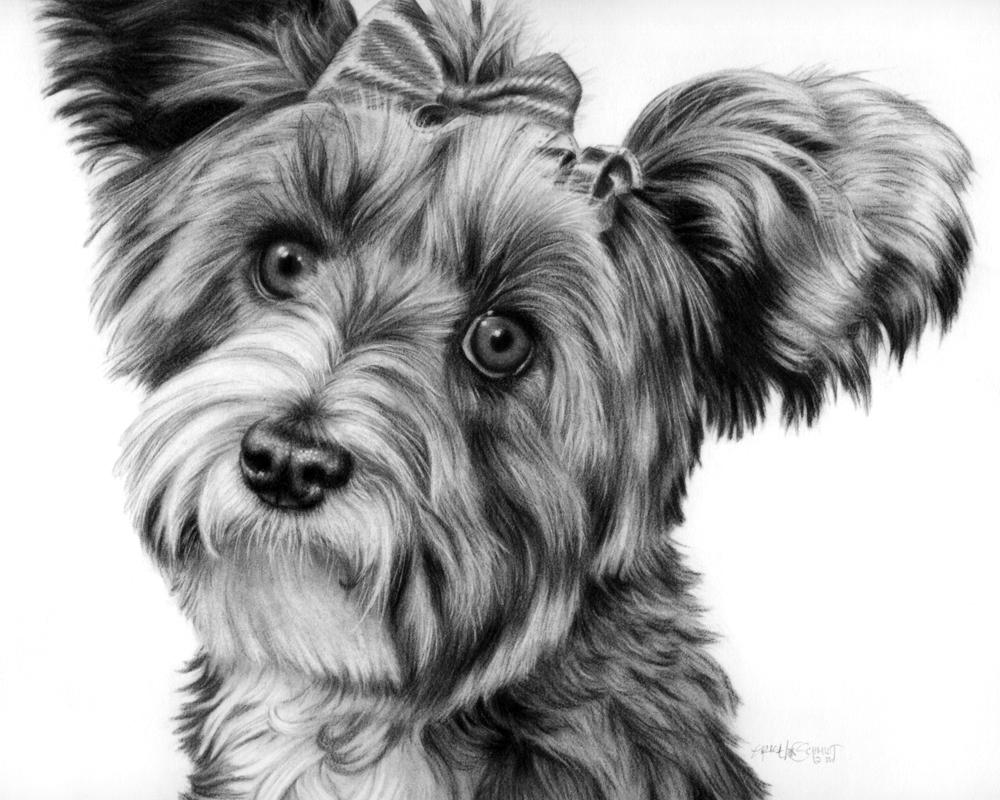 'Maxine' portrait